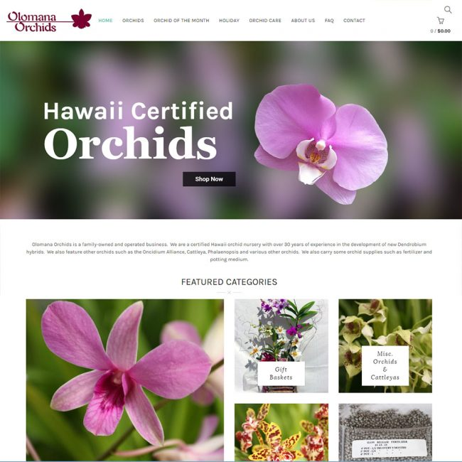 Olomana Orchids